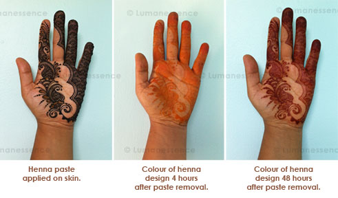 Lumanessence Henna Body Art Montreal Faqs Bridal Baby